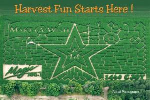 Stroms 2009 Corn Maze