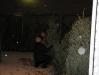 ChristmasTrees_Dec08_09