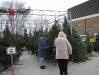 ChristmasTrees_Dec08_14
