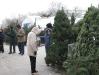 ChristmasTrees_Dec08_17