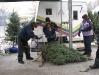 ChristmasTrees_Dec08_20