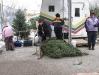 ChristmasTrees_Dec08_22