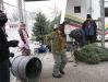 ChristmasTrees_Dec08_25