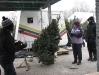 ChristmasTrees_Dec08_28