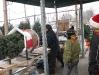 ChristmasTrees_Dec08_31
