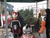 ChristmasTrees_Dec08_34